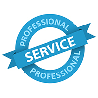 Professional Home Inspection Service Ribbon