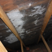 Home inspections west vancouver attic